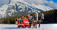 Treat Yourself to A Winter Sleigh Ride With Banff Adventures