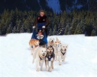 Dogsledding Adventures Banff: The Perfect Way To Explore The Canadian Wilderness