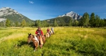 Double Your Fun With Banff Adventures' Vacation Packages This Summer