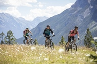 The Best Biking Trails in Banff