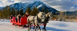 Gear Up and Saddle Up For A Snowmobile or Sleigh Ride With Banff Adventures This Winter