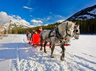 Sleigh Ride 101: How to Prepare