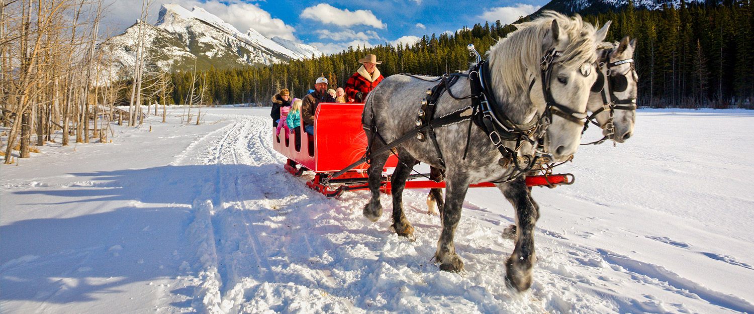 Banff Winter Activity Pass